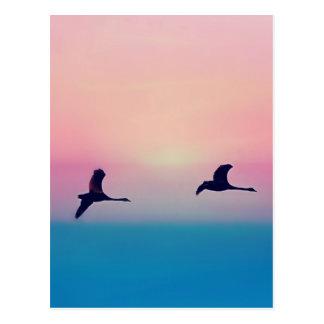 Three Geese In Flight Postcard