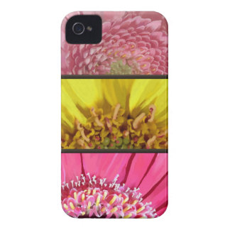 Three Gerbera Daisy Macro Painting Blackberry Case