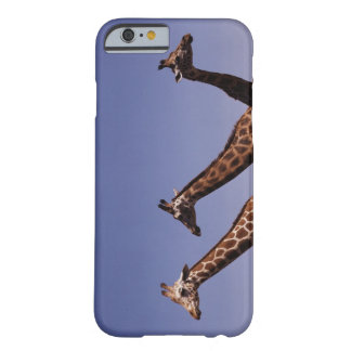 Three giraffes barely there iPhone 6 case