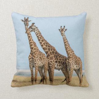 Three Giraffes Posing Cushion
