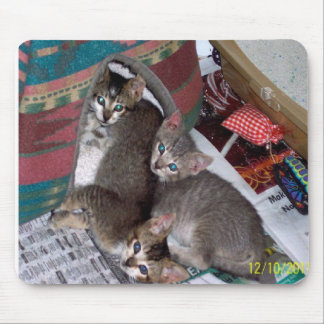 Three girls mouse mat