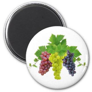 Three grapes magnet
