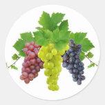 Three grapes round sticker