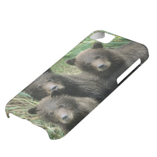 Three Grizzly Bear Cubs or Coys (Cub of the iPhone 5C Case