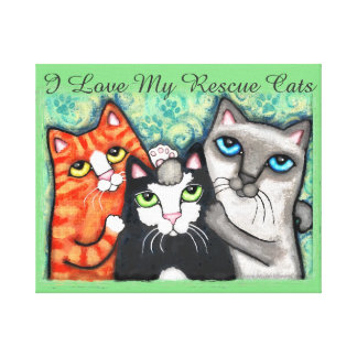 Three Happy Cats Wrapped Canvas Stretched Canvas Prints