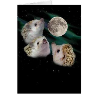 Three Hedgehog Moon Greeting Card
