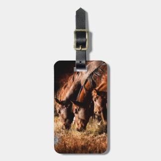 Three horses drinking in dusky light luggage tag