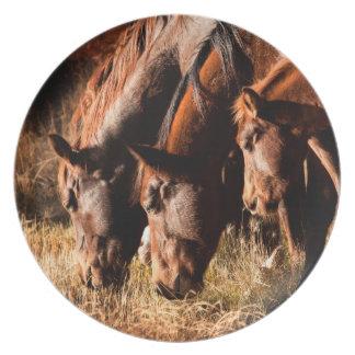 Three horses drinking in dusky light plate
