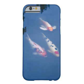 Three Japanese koi fish in pond Barely There iPhone 6 Case