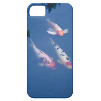 Three Japanese koi fish in pond iPhone 5 Cases