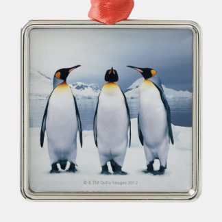 Three King Penguins Silver-Colored Square Decoration