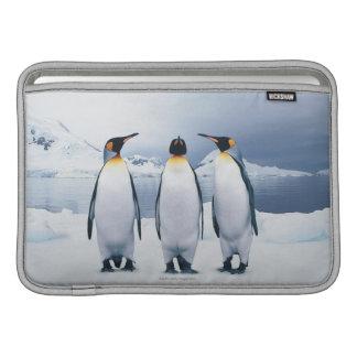 Three King Penguins Sleeve For MacBook Air