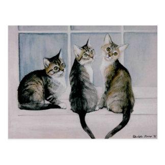 """Three Kittens"" Art Reproduction Postcards"