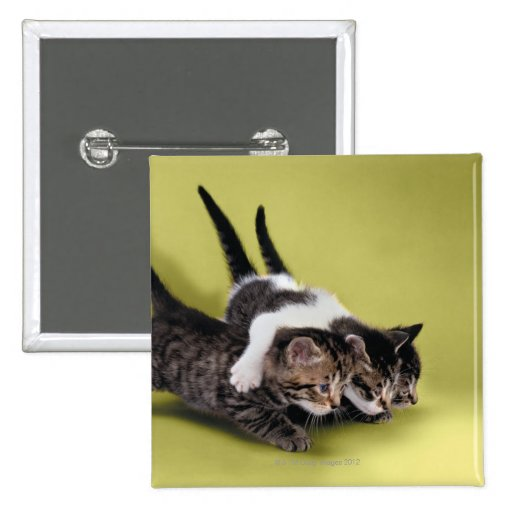 Three kittens hugging each other 15 cm square badge