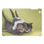 Three kittens hugging each other case for the iPad mini