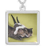 Three kittens hugging each other square pendant necklace