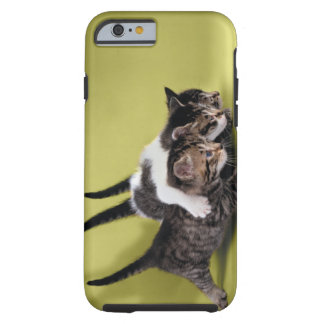 Three kittens hugging each other tough iPhone 6 case