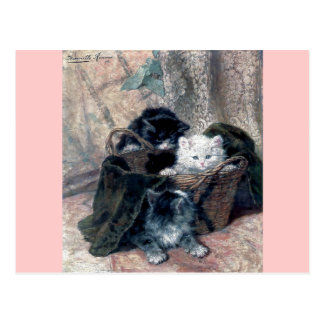Three Kittens in a Basket Antique painting Postcard