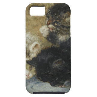 Three kittens iPhone 5 cases