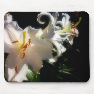 Three Lillies Soaking up the sun Mouse Pad