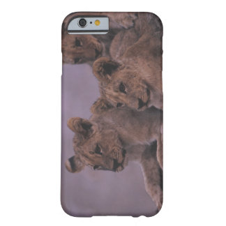 Three Lion Cubs Barely There iPhone 6 Case