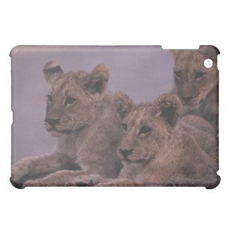 Three Lion Cubs iPad Mini Cases