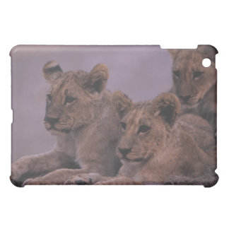 Three Lion Cubs iPad Mini Covers