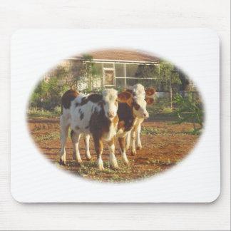 Three Little Calves. Mouse Pad