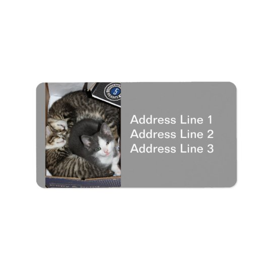 Three Little Kittens Label