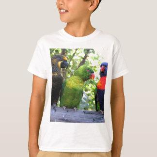 Three Lorikeets Tshirts