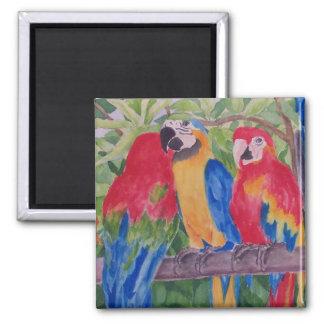 Three Maui Macaws Square Magnet