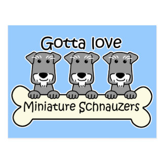 Three Miniature Schnauzers Postcard