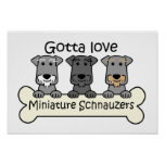 Three Miniature Schnauzers Poster