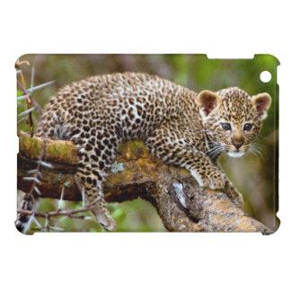Three Month Old Leopard (Panthera Pardus) Cub iPad Mini Cover