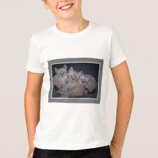 Three of a Kind Lynx Point Siamese Kittens Tees