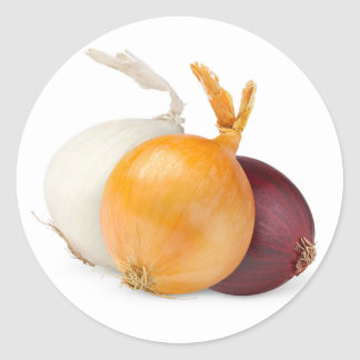 Three onions of various colors round sticker