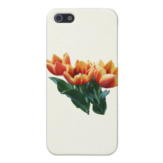Three Orange and Red Tulips Cases For iPhone 5