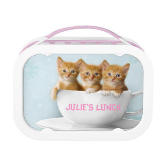 Three Orange Cute Kittens Lunch Box Kids School