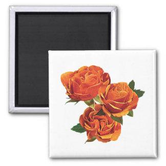 Three Orange Roses Refrigerator Magnet