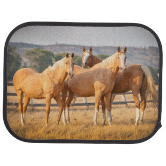 Three Palomino Ponies Car Mat