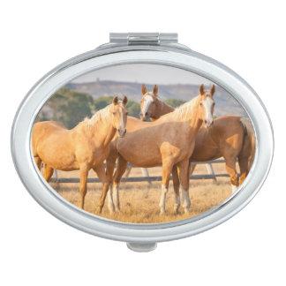 Three Palomino Ponies Compact Mirror