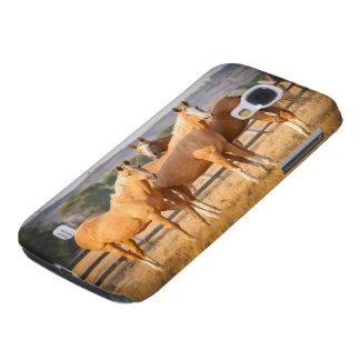 Three Palomino Ponies Galaxy S4 Case