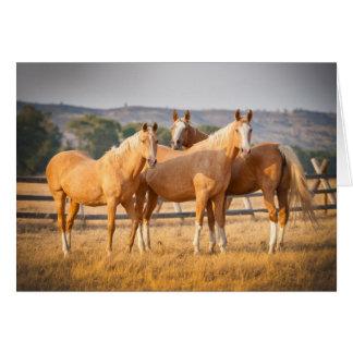 Three Palomino Ponies Greeting Card