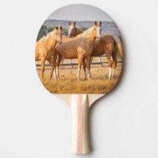 Three Palomino Ponies Ping Pong Paddle