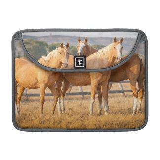 Three Palomino Ponies Sleeve For MacBook Pro