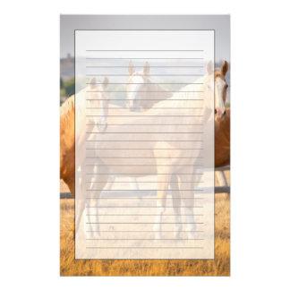 Three Palomino Ponies Stationery