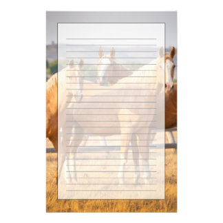 Three Palomino Ponies Stationery Design