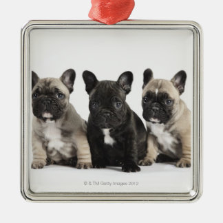 Three Pedigree Puppies Christmas Ornament