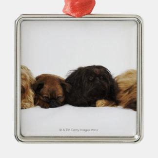 Three Pekingese dogs and single Pug lying down Christmas Ornament