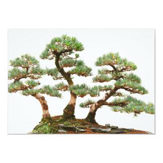 three pine bonsai trees card